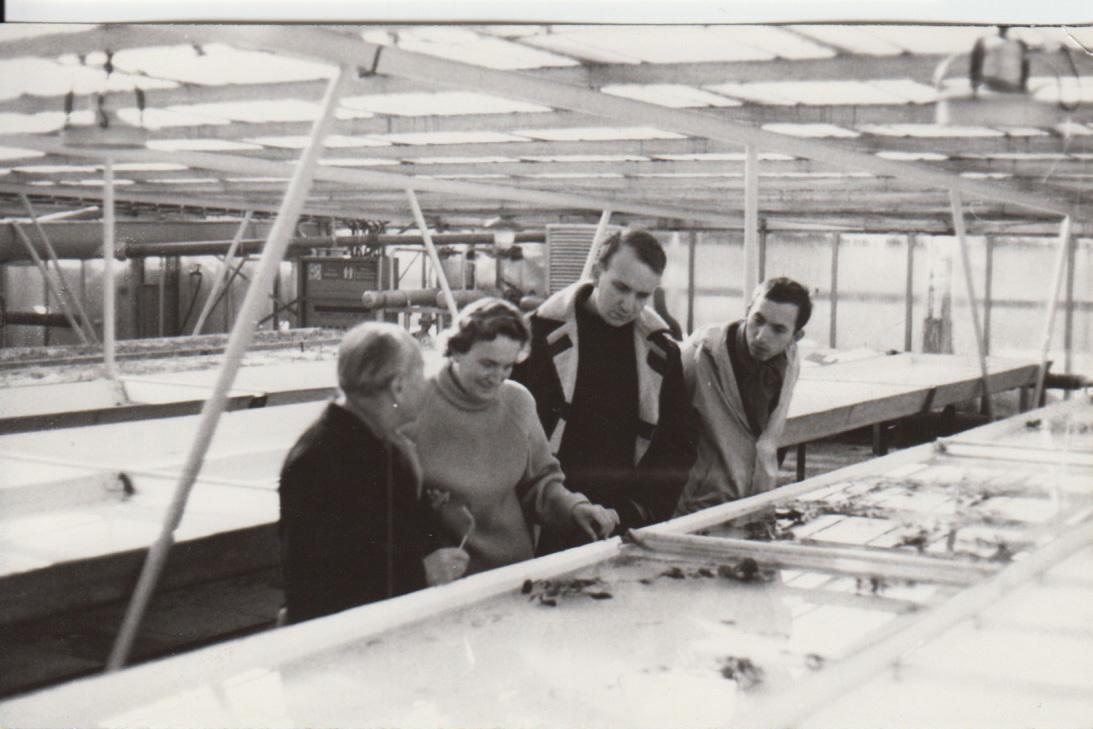 1. Hydroponií kultivace Třeboň. Zleva S. Prat, D. Dykyjová, J. Květ, K. Fiala