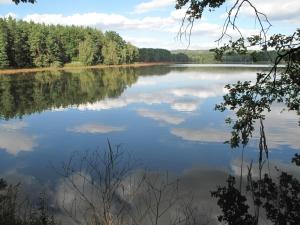 Blanský rybník u Hluboké nad Vltavou