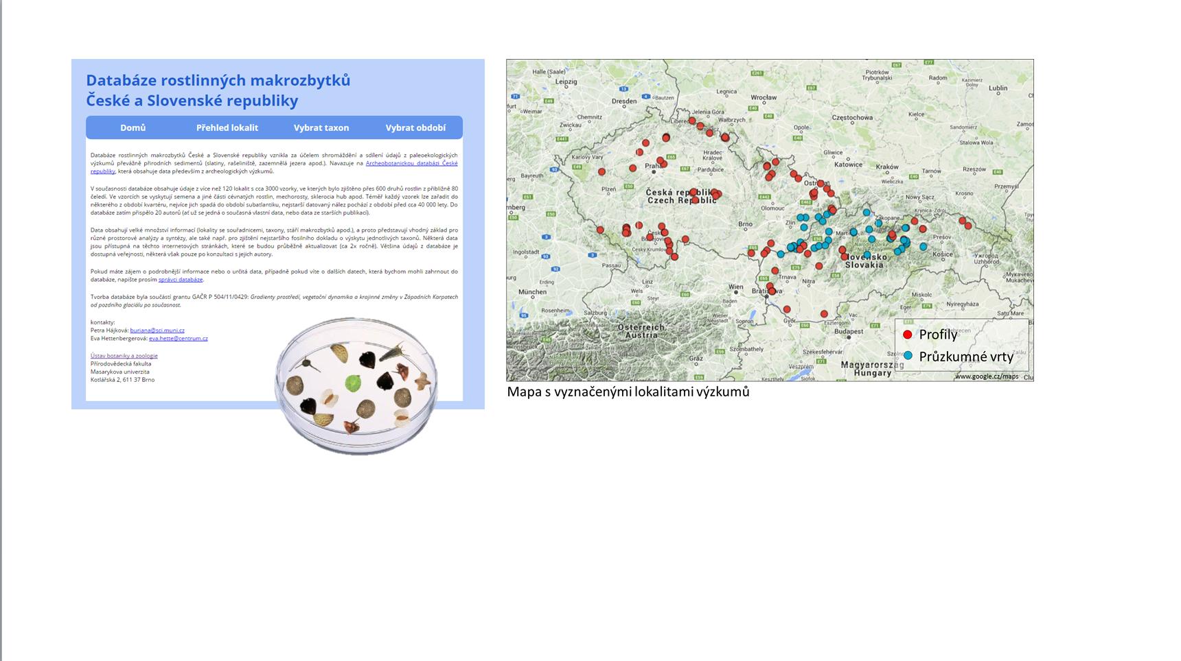 Databáze rostlinných makrozbytků České a Slovenské republiky / Database of plant macrofossils of Czech Republic and Slovakia